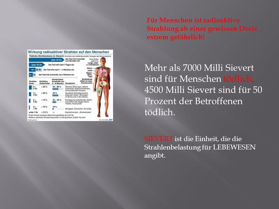 Für Menschen ist radioaktive Strahlung ab einer gewissen Dosis extrem gefährlich! Mehr als 7000 Milli Sievert sind für Menschen tödlich, 4500 Milli Si