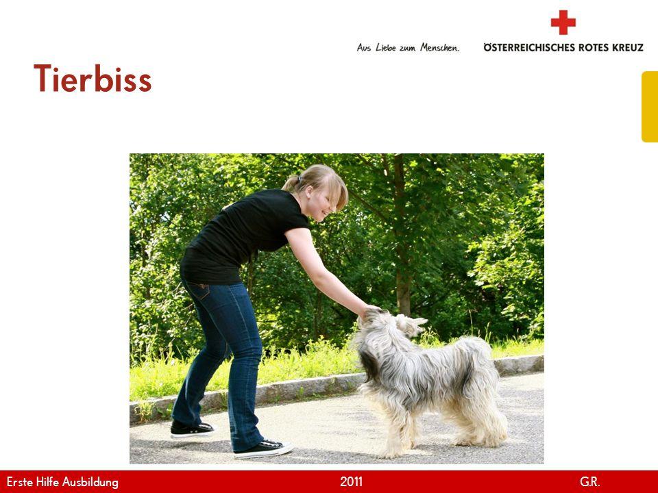 www.roteskreuz.at Version April | 2011 Tierbiss 95 Erste Hilfe Ausbildung 2011 G.R.