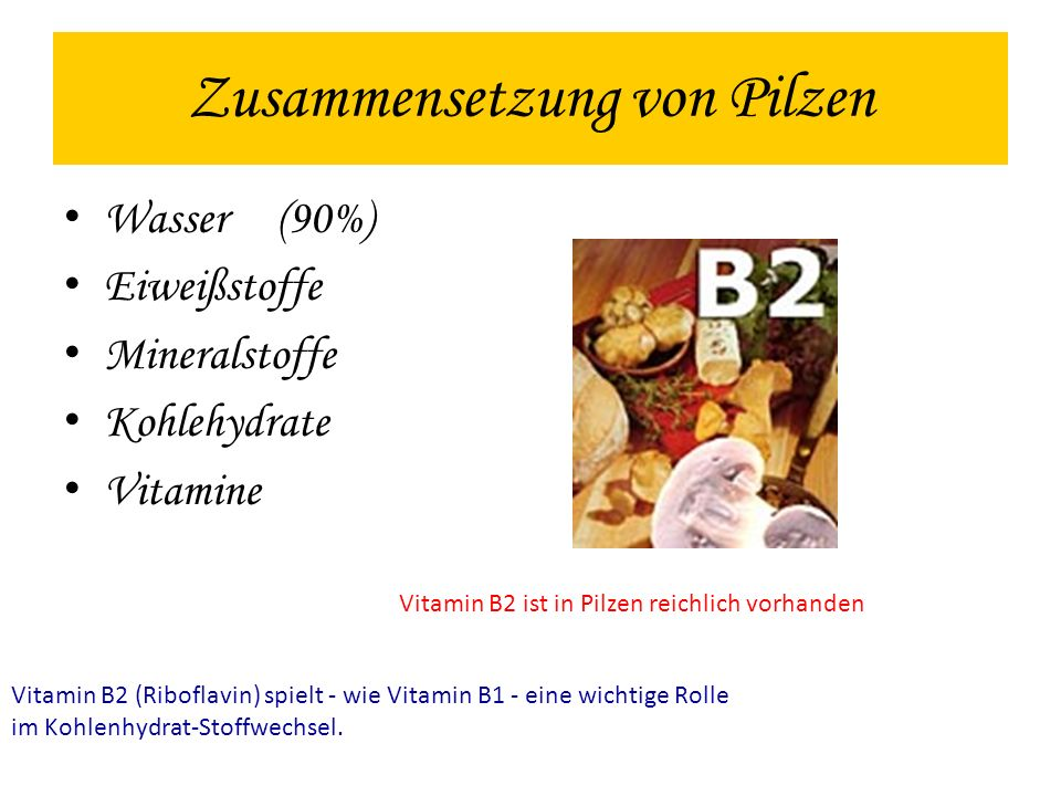 Zusammensetzung von Pilzen Wasser(90%) Eiweißstoffe Mineralstoffe Kohlehydrate Vitamine Vitamin B2 (Riboflavin) spielt - wie Vitamin B1 - eine wichtig
