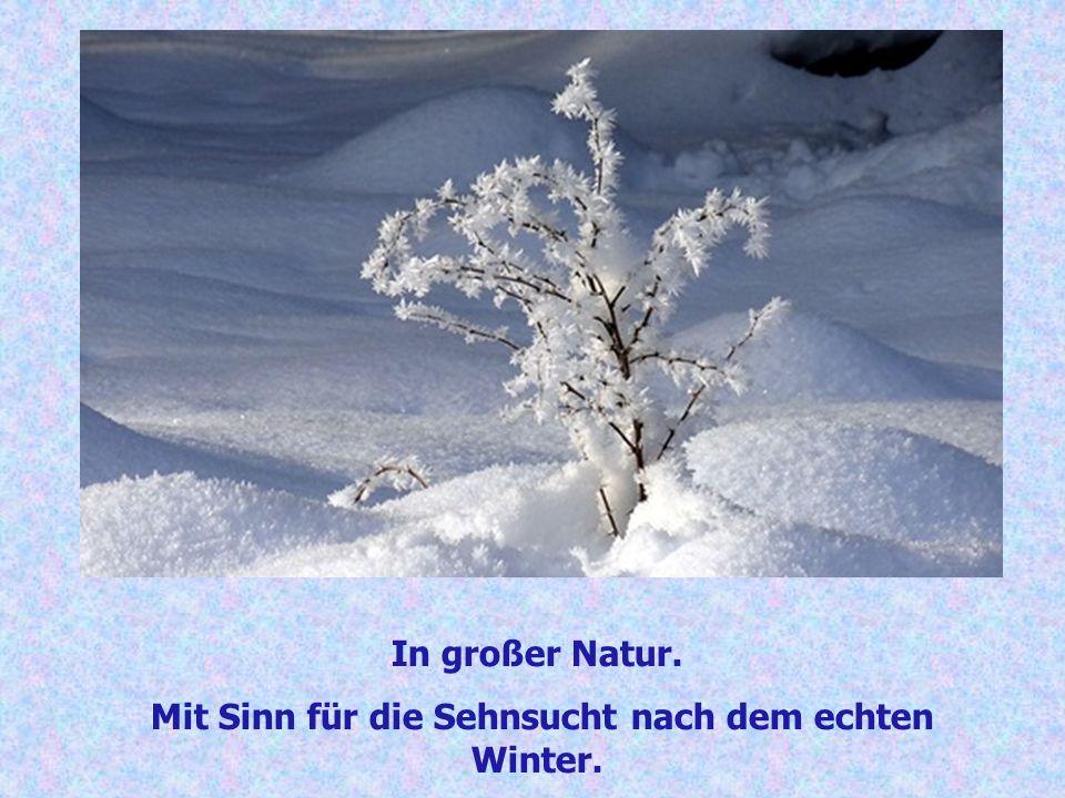 In großer Natur. Mit Sinn für die Sehnsucht nach dem echten Winter.