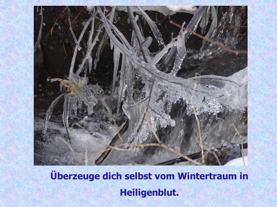 Überzeuge dich selbst vom Wintertraum in Heiligenblut.