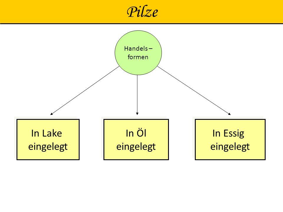 Pilze In Lake eingelegt In Lake eingelegt In Essig eingelegt In Essig eingelegt In Öl eingelegt In Öl eingelegt Handels – formen