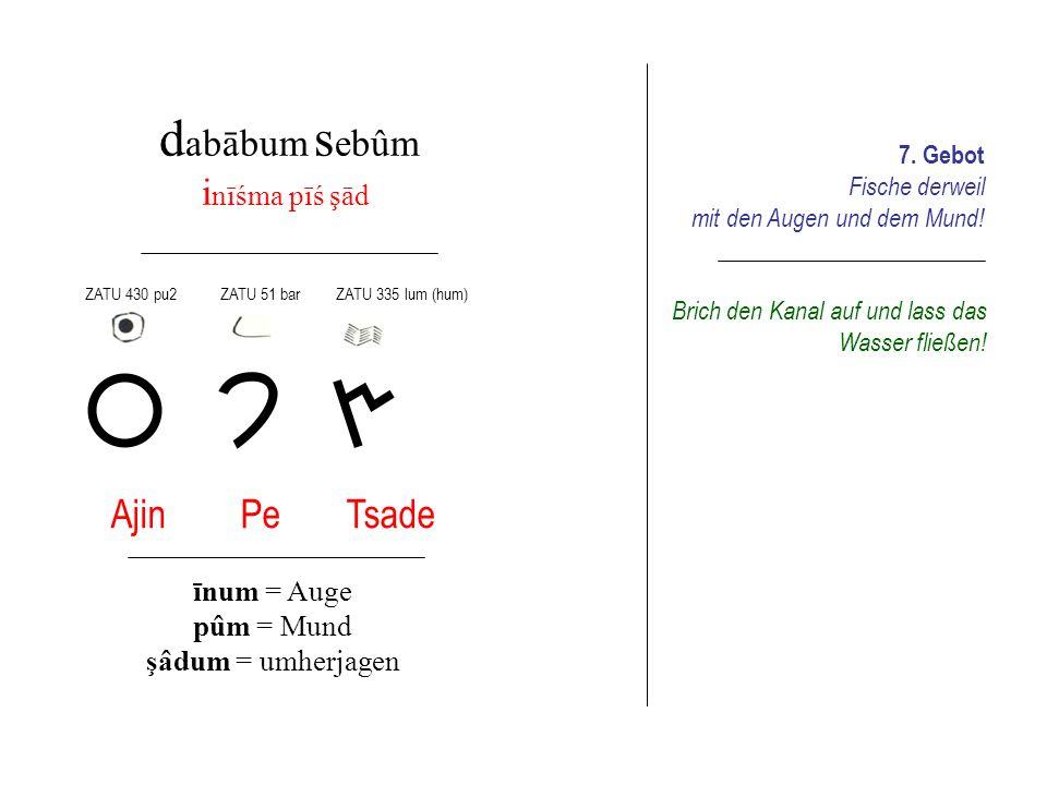 d abābum s amnum q ibiśim Qoph qabûm = sprechen 8.
