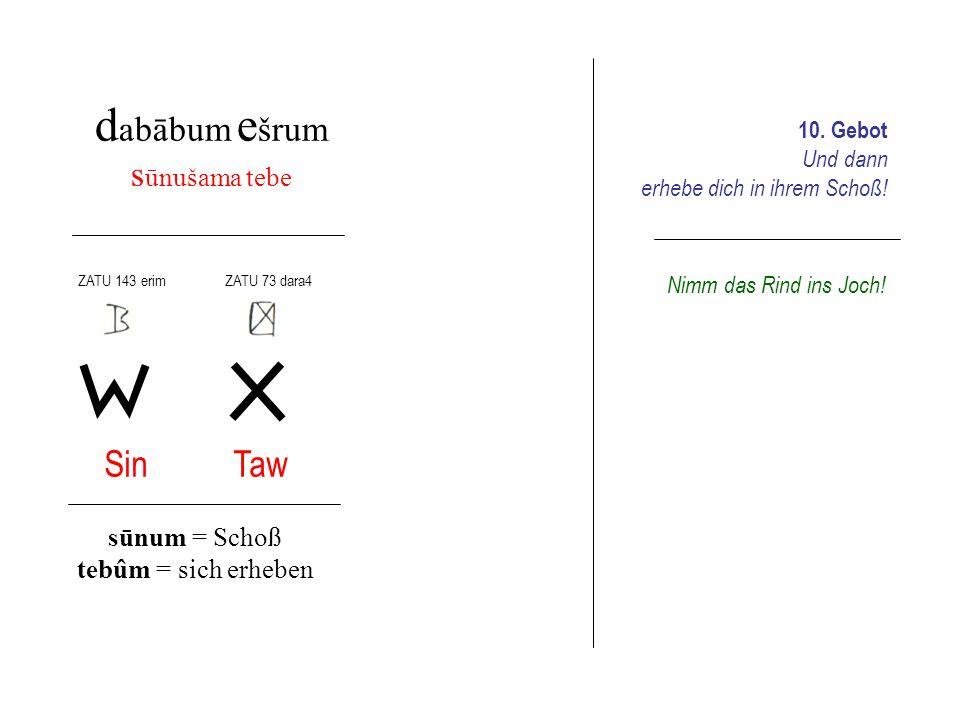 d abābum e šrum s ūnušama tebe Sin Taw sūnum = Schoß tebûm = sich erheben 10. Gebot Und dann erhebe dich in ihrem Schoß! ZATU 143 erim ZATU 73 dara4 N