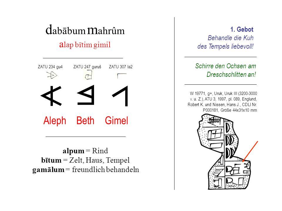 d abābum m ahrûm a lap bītim gimil Aleph Beth Gimel alpum = Rind bītum = Zelt, Haus, Tempel gamālum = freundlich behandeln 1. Gebot Behandle die Kuh d