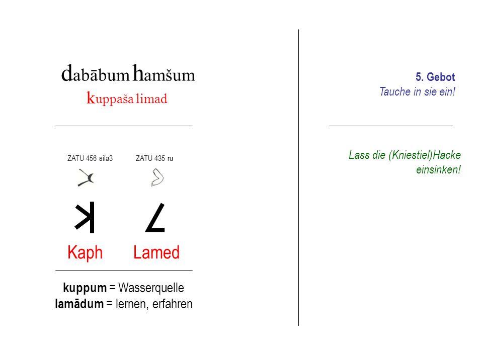 d abābum h amšum k uppaša limad Kaph Lamed kuppum = Wasserquelle lamādum = lernen, erfahren ZATU 456 sila3 ZATU 435 ru Lass die (Kniestiel)Hacke einsi
