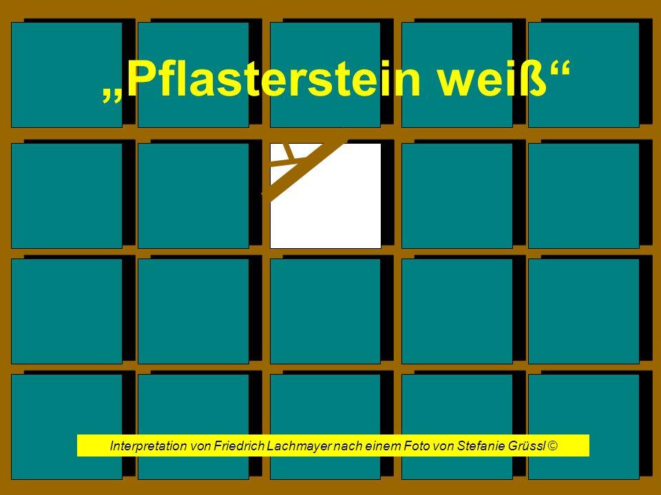 Interpretation von Friedrich Lachmayer nach einem Foto von Stefanie Grüssl ©