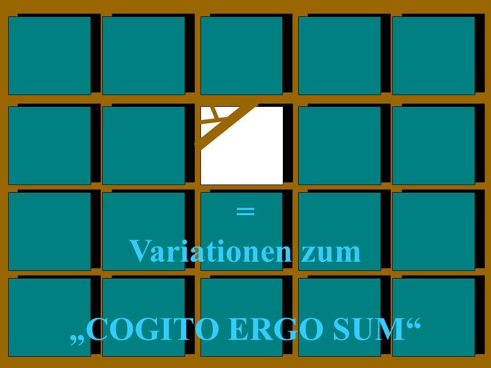 = Variationen zum COGITO ERGO SUM