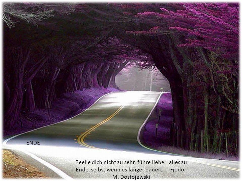 Gutmütigkeit ist eine alltägliche Eigenschaft. Güte die höchste Tugend. Marie von Ebner-Eschenbach