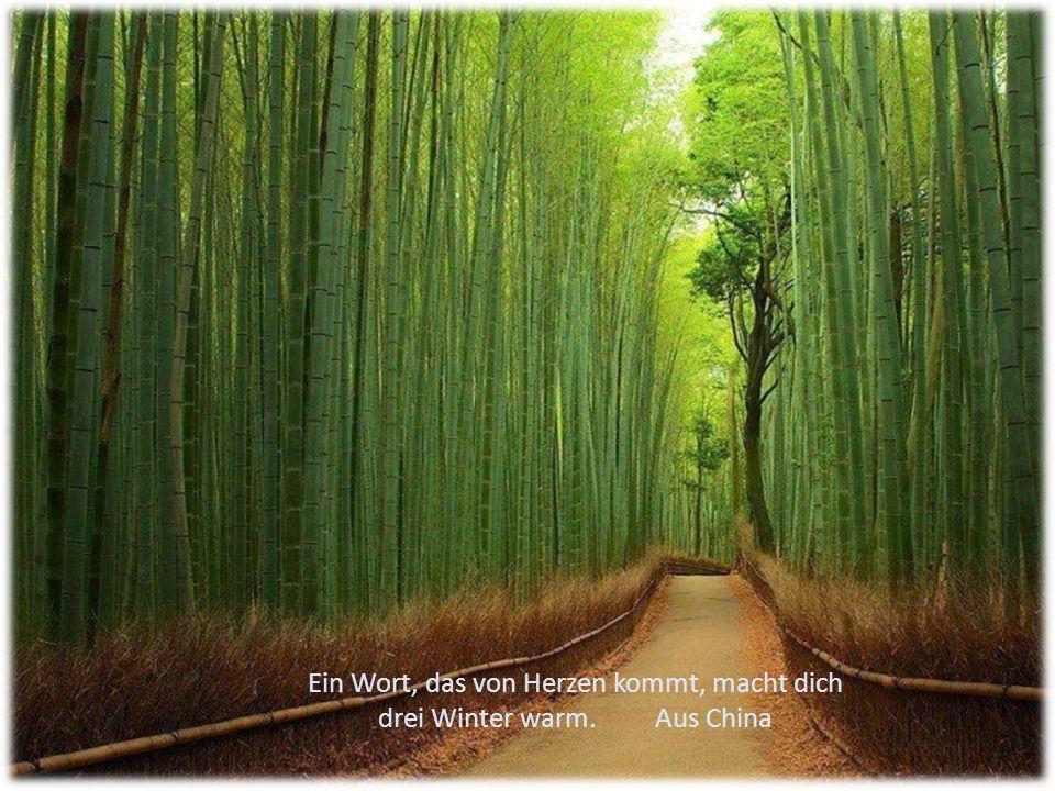Ein Wort, das von Herzen kommt, macht dich drei Winter warm. Aus China