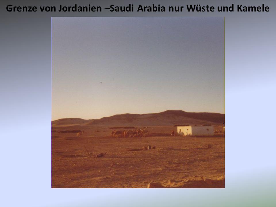 Grenze von Jordanien –Saudi Arabia nur Wüste und Kamele