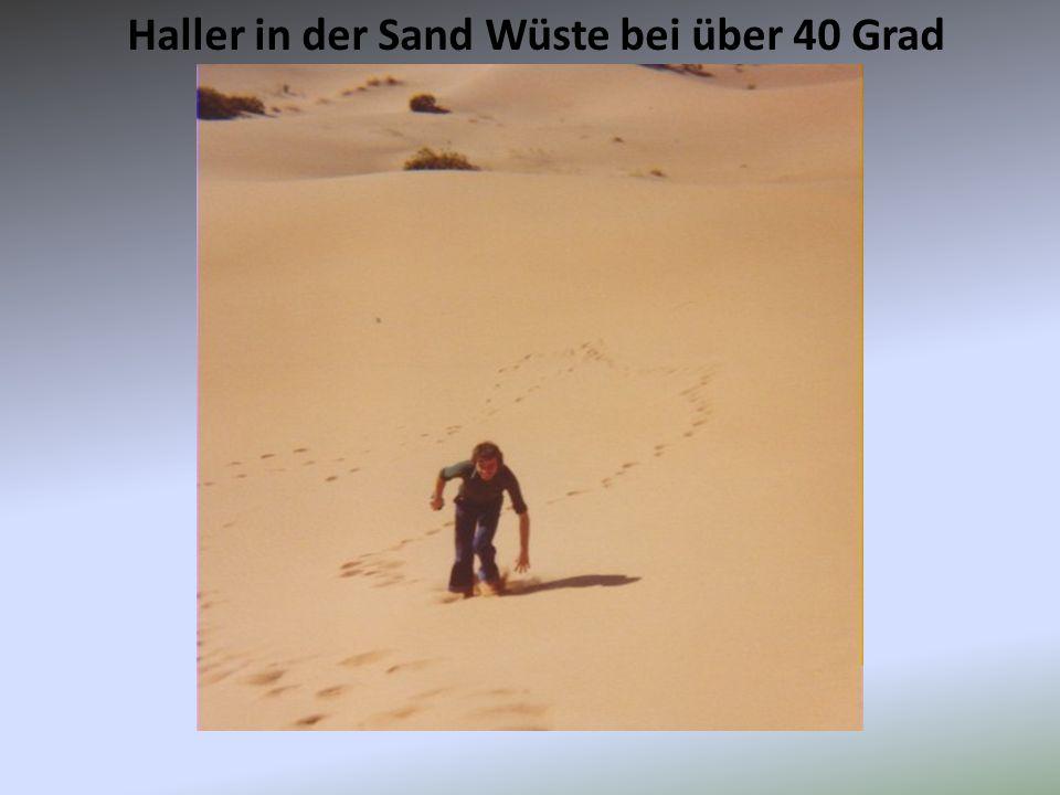 Haller in der Sand Wüste bei über 40 Grad