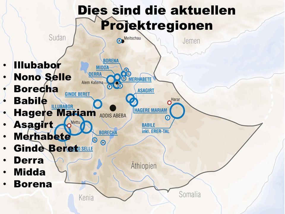 Dies sind die aktuellen Projektregionen Illubabor Nono Selle Borecha Babile Hagere Mariam Asagirt Merhabete Ginde Beret Derra Midda Borena