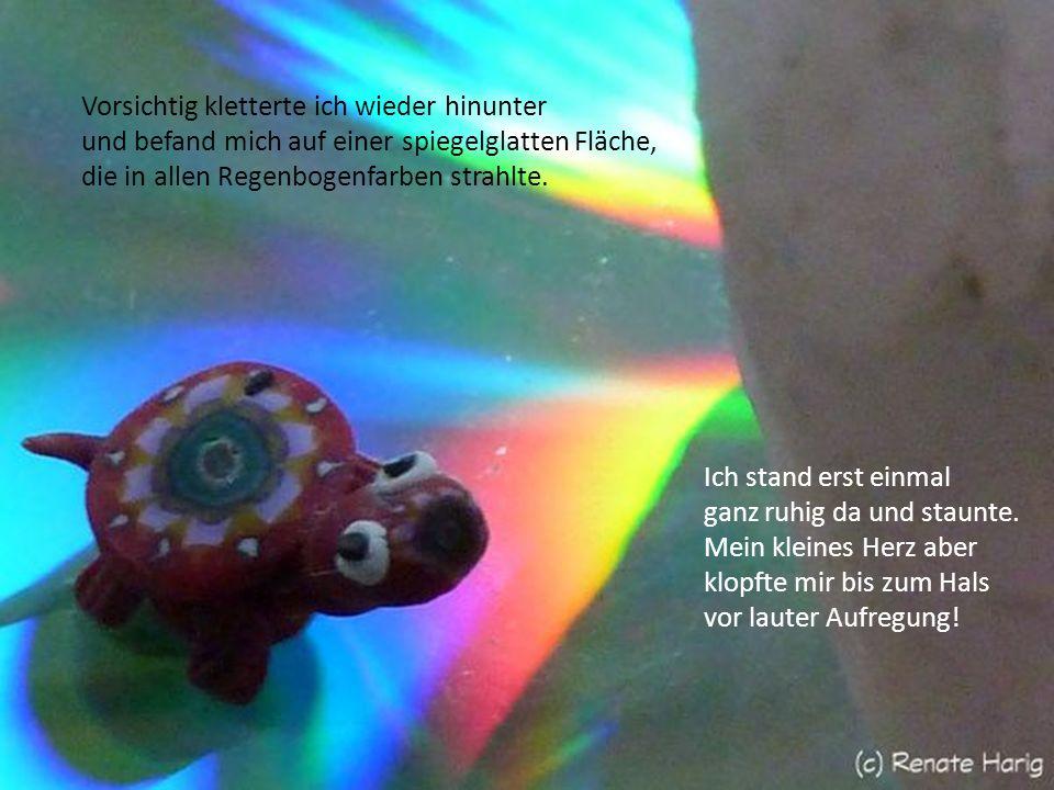 Die Darsteller: eine normale CD ein besonders netter Glasschmetterling eine winzigkleine bunte Plastikschildkröte