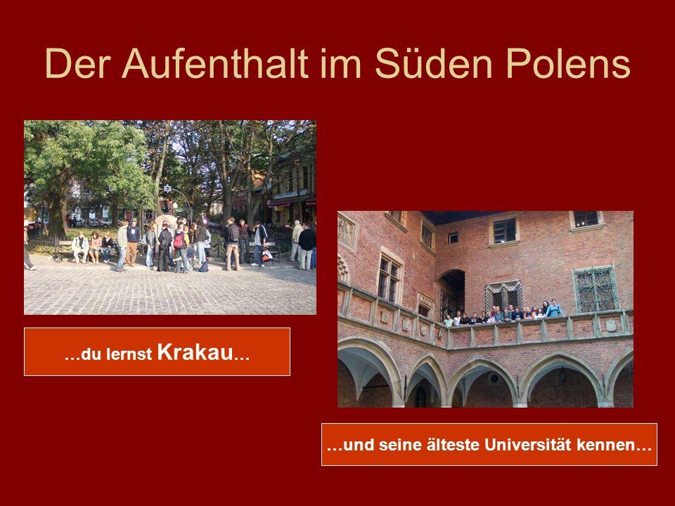 Der Aufenthalt im Süden Polens …du lernst Krakau … …und seine älteste Universität kennen…