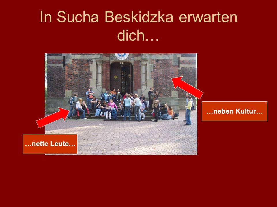 In Sucha Beskidzka erwarten dich… …nette Leute… …neben Kultur…