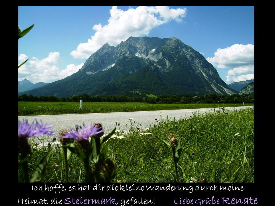 In die Berg bin i gern und do gfreit mi mei Gmüat, wo die Olmröserln wochsn und der Enzian bliat….. (steirisches Lied) Die Steiermark ist meine meine