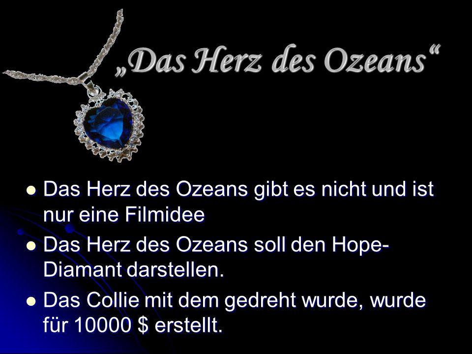 Das Herz des Ozeans Das Herz des Ozeans Das Herz des Ozeans gibt es nicht und ist nur eine Filmidee Das Herz des Ozeans gibt es nicht und ist nur eine