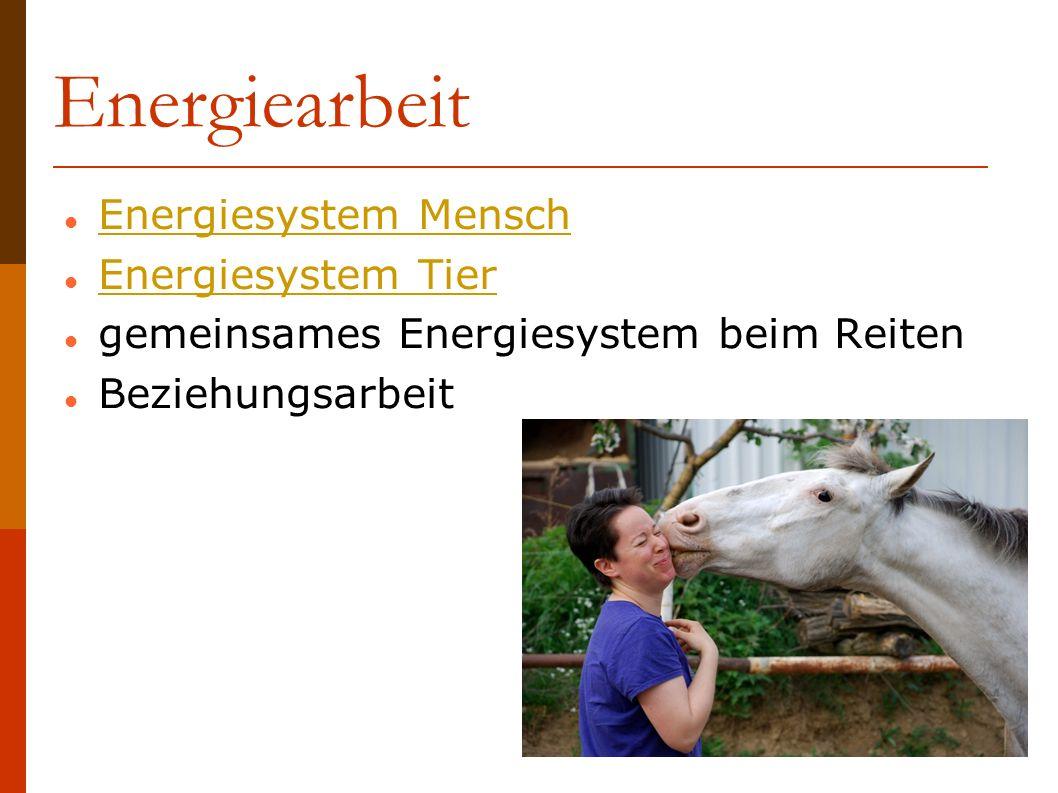 Energiearbeit Energiesystem Mensch Energiesystem Tier gemeinsames Energiesystem beim Reiten Beziehungsarbeit