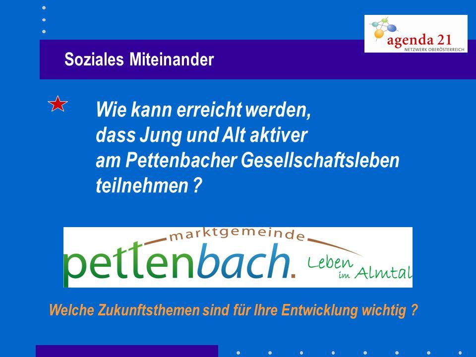 Soziales Miteinander Wie kann erreicht werden, dass Jung und Alt aktiver am Pettenbacher Gesellschaftsleben teilnehmen ? Welche Zukunftsthemen sind fü