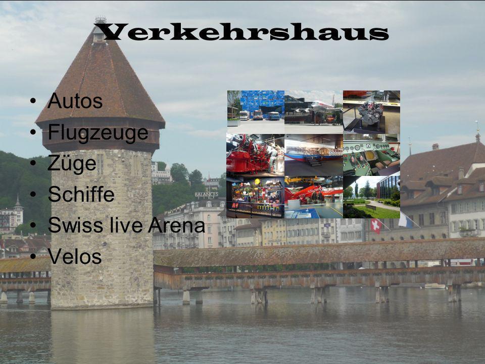 Museen Verkehrshaus Gletschergarten Bourbaki - Panorama Historisches Museum