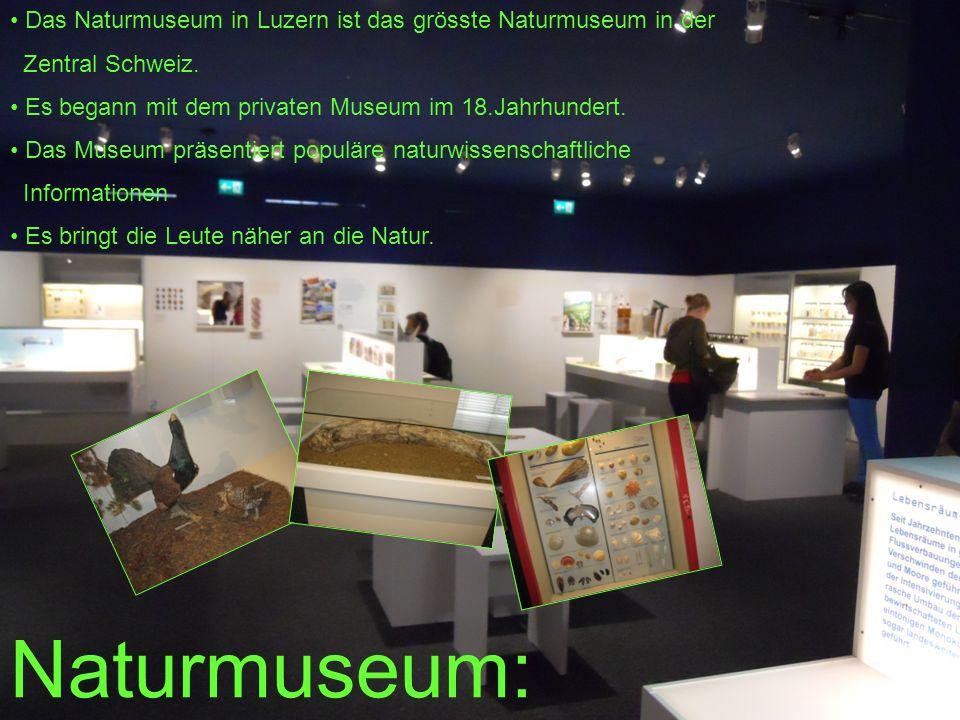 Naturmuseum: Das Naturmuseum in Luzern ist das grösste Naturmuseum in der Zentral Schweiz. Es begann mit dem privaten Museum im 18.Jahrhundert. Das Mu