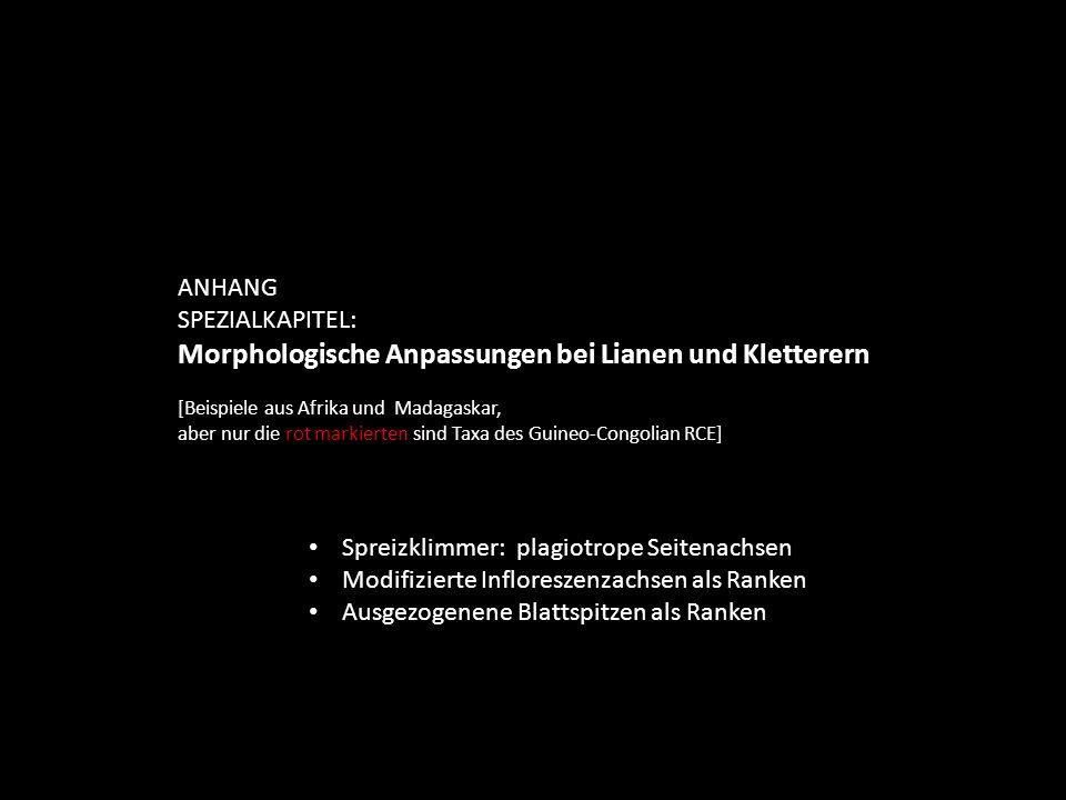 ANHANG SPEZIALKAPITEL: Verbreitung und Wuchsformen von Pachypodium* (Apocynaceae) * ca.