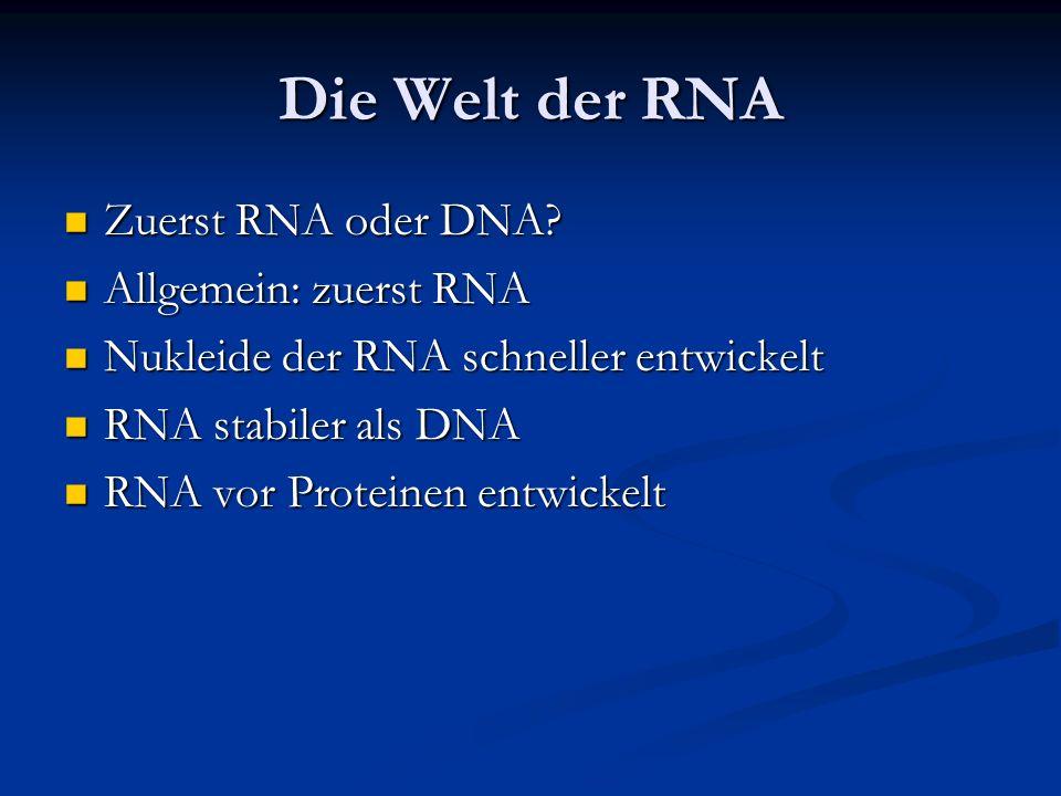 Die Welt der RNA Zuerst RNA oder DNA? Zuerst RNA oder DNA? Allgemein: zuerst RNA Allgemein: zuerst RNA Nukleide der RNA schneller entwickelt Nukleide
