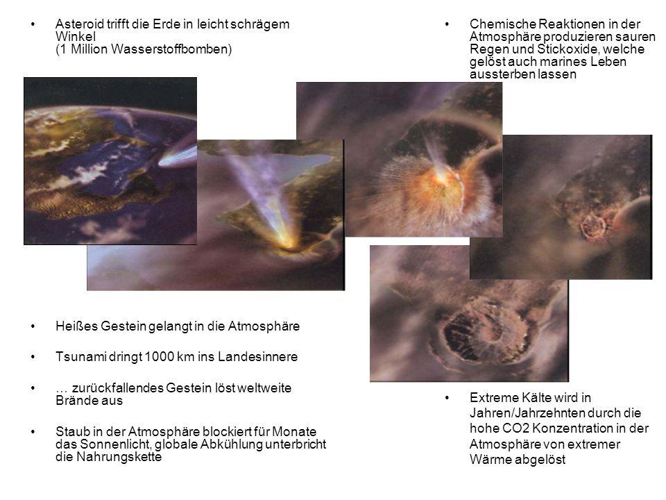 Asteroid trifft die Erde in leicht schrägem Winkel (1 Million Wasserstoffbomben) Heißes Gestein gelangt in die Atmosphäre Tsunami dringt 1000 km ins L
