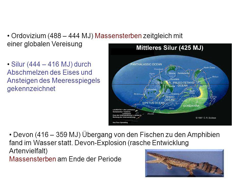 Silur (444 – 416 MJ) durch Abschmelzen des Eises und Ansteigen des Meeresspiegels gekennzeichnet Ordovizium (488 – 444 MJ) Massensterben zeitgleich mi