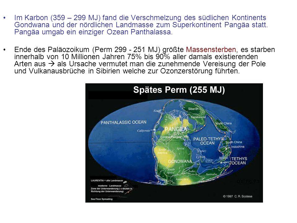 Im Karbon (359 – 299 MJ) fand die Verschmelzung des südlichen Kontinents Gondwana und der nördlichen Landmasse zum Superkontinent Pangäa statt. Pangäa