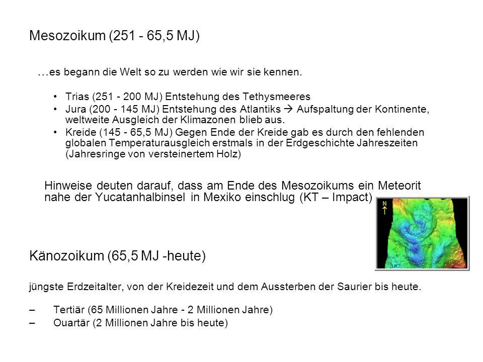 Mesozoikum (251 - 65,5 MJ) … es begann die Welt so zu werden wie wir sie kennen. Trias (251 - 200 MJ) Entstehung des Tethysmeeres Jura (200 - 145 MJ)