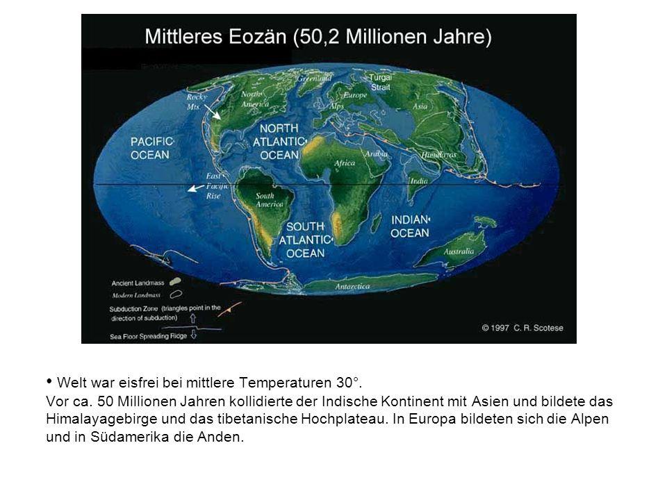 Welt war eisfrei bei mittlere Temperaturen 30°. Vor ca. 50 Millionen Jahren kollidierte der Indische Kontinent mit Asien und bildete das Himalayagebir