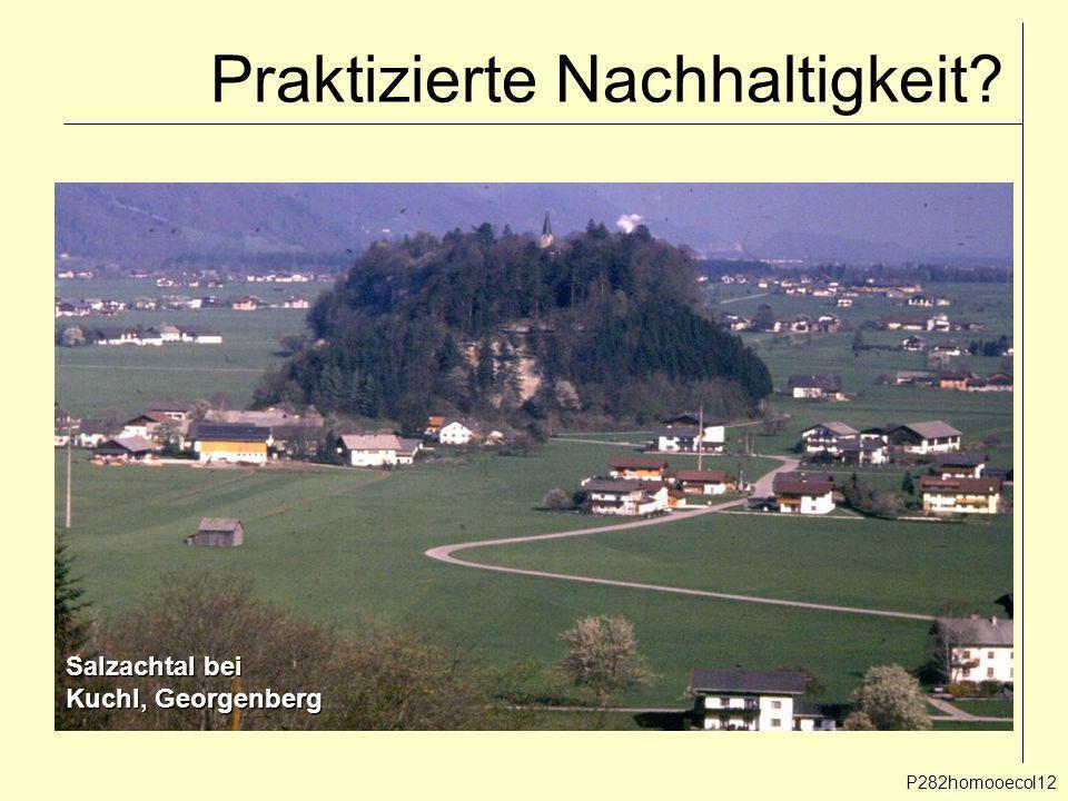 Praktizierte Nachhaltigkeit? P282homooecol12 Salzachtal bei Kuchl, Georgenberg