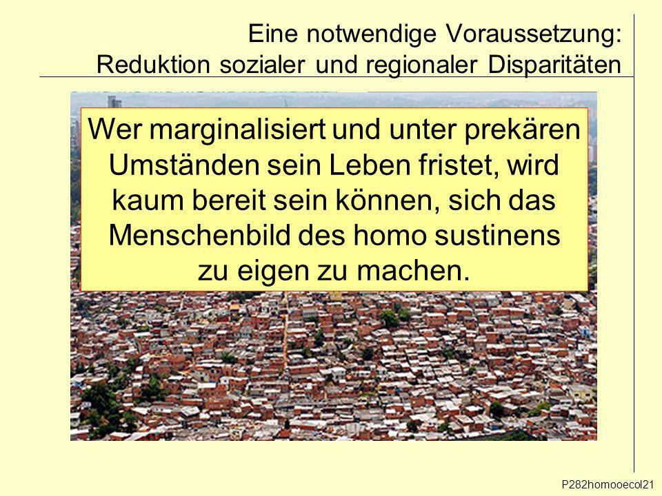 Eine notwendige Voraussetzung: Reduktion sozialer und regionaler Disparitäten P282homooecol21 Wer marginalisiert und unter prekären Umständen sein Leb