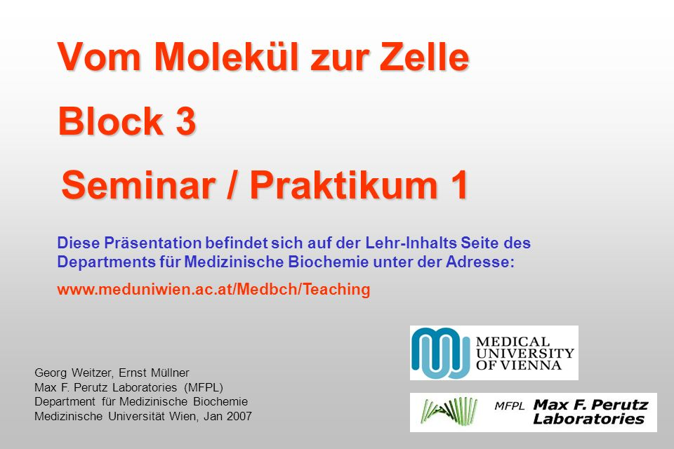 Vom Molekül zur Zelle Block 3 Seminar / Praktikum 1 Georg Weitzer, Ernst Müllner Max F. Perutz Laboratories (MFPL) Department für Medizinische Biochem