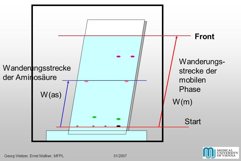Front Start Wanderungs- strecke der mobilen Phase Wanderungsstrecke der Aminosäure W(as) W(m) Georg Weitzer, Ernst Müllner, MFPL 01/2007