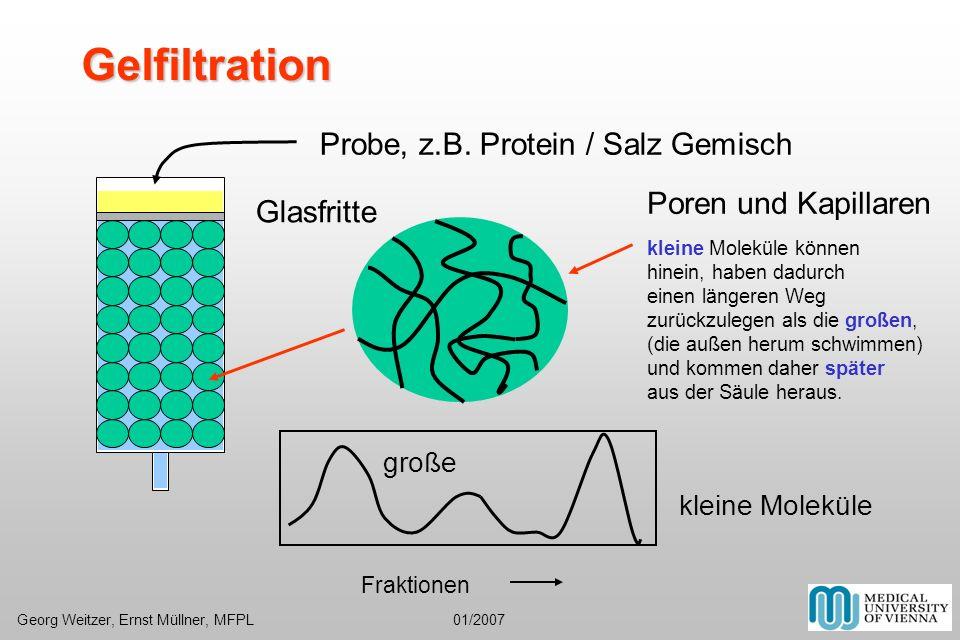 Gelfiltration Probe, z.B. Protein / Salz Gemisch Poren und Kapillaren kleine Moleküle können hinein, haben dadurch einen längeren Weg zurückzulegen al