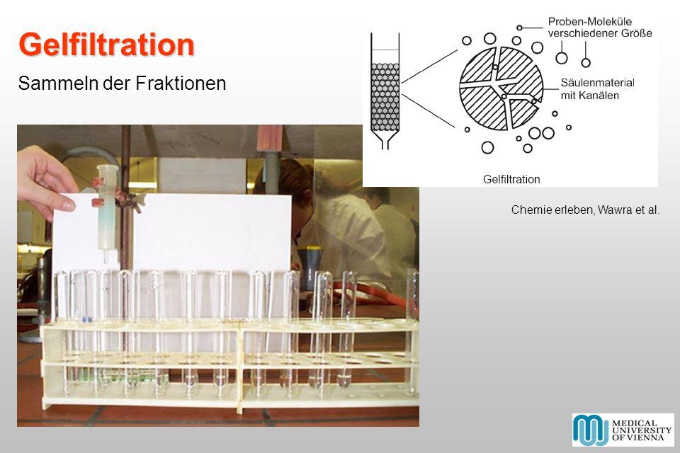 Gelfiltration Gelfiltration Sammeln der Fraktionen Chemie erleben, Wawra et al.
