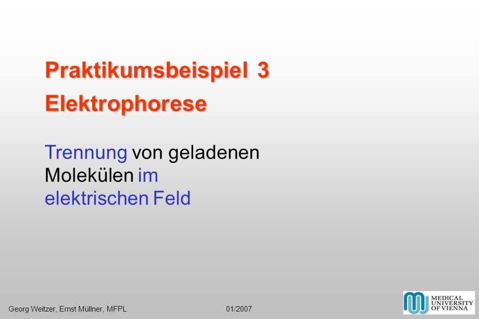 Praktikumsbeispiel 3 Elektrophorese Trennung von geladenen Molekülen im elektrischen Feld Georg Weitzer, Ernst Müllner, MFPL 01/2007