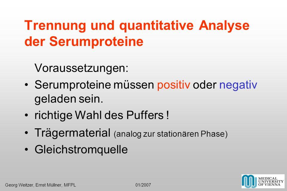 Trennung und quantitative Analyse der Serumproteine Voraussetzungen: Serumproteine müssen positiv oder negativ geladen sein. richtige Wahl des Puffers