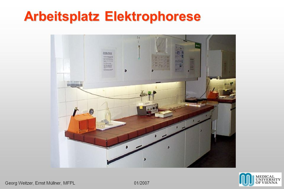 Arbeitsplatz Elektrophorese Georg Weitzer, Ernst Müllner, MFPL 01/2007
