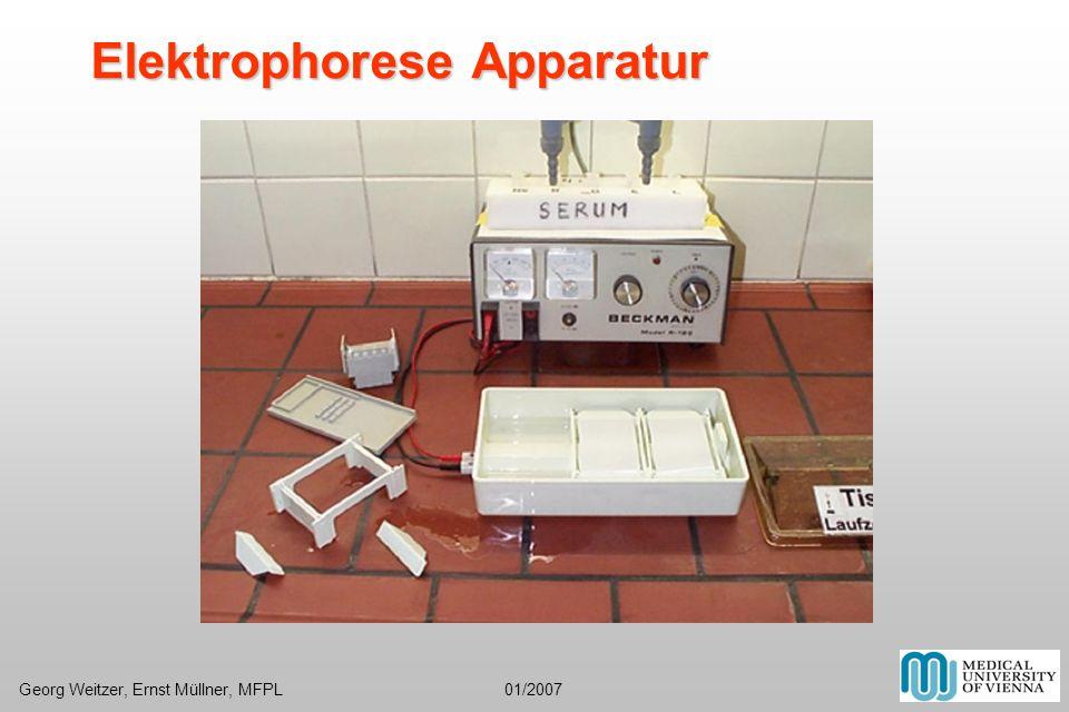 Elektrophorese Apparatur Georg Weitzer, Ernst Müllner, MFPL 01/2007