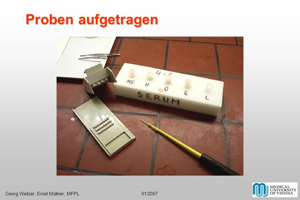 Proben aufgetragen Georg Weitzer, Ernst Müllner, MFPL 01/2007