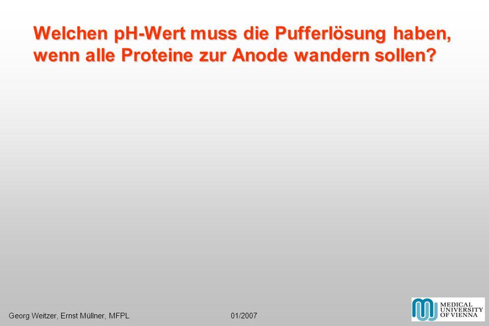 Welchen pH-Wert muss die Pufferlösung haben, wenn alle Proteine zur Anode wandern sollen? Georg Weitzer, Ernst Müllner, MFPL 01/2007