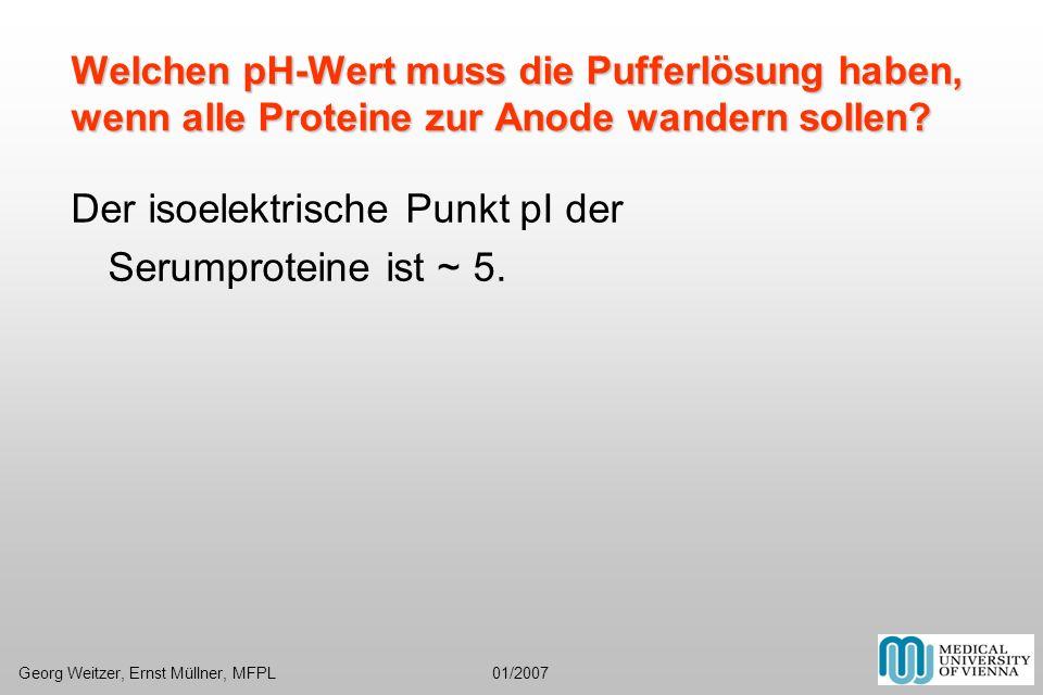 Welchen pH-Wert muss die Pufferlösung haben, wenn alle Proteine zur Anode wandern sollen? Der isoelektrische Punkt pI der Serumproteine ist ~ 5. Georg