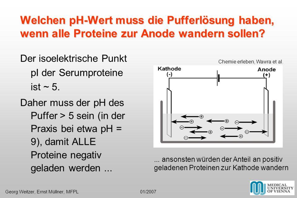 Welchen pH-Wert muss die Pufferlösung haben, wenn alle Proteine zur Anode wandern sollen? Der isoelektrische Punkt pI der Serumproteine ist ~ 5. Daher