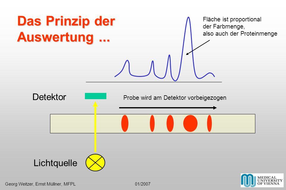 Fläche ist proportional der Farbmenge, also auch der Proteinmenge Detektor Lichtquelle Probe wird am Detektor vorbeigezogen Das Prinzip der Auswertung
