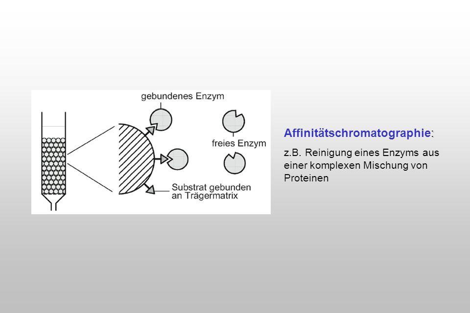 : Affinitätschromatographie: z.B. Reinigung eines Enzyms aus einer komplexen Mischung von Proteinen