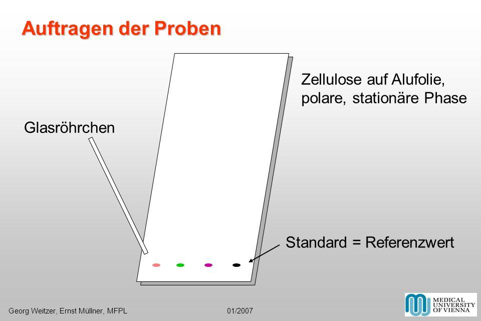 Auftragen der Proben Georg Weitzer, Ernst Müllner, MFPL 01/2007
